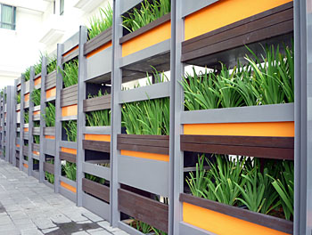 Large container wall of plants
