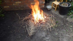 Burn old dry twigs - fertilize and makes charcoal