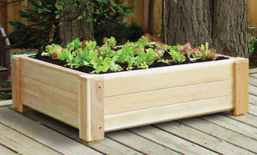 Square foot gardening, Square foot gardening, indoor Square foot ...