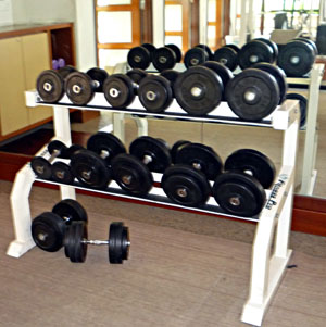 Free weights useful at start of bodybuilding training